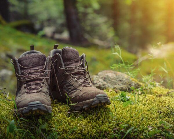 Wanderschuhe Pfälzer Wald Fastenwandern